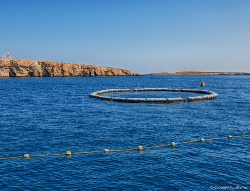 WEBINAR 2 – 10th June – understanding the opportunities to be seized from fisheries-sector residues
