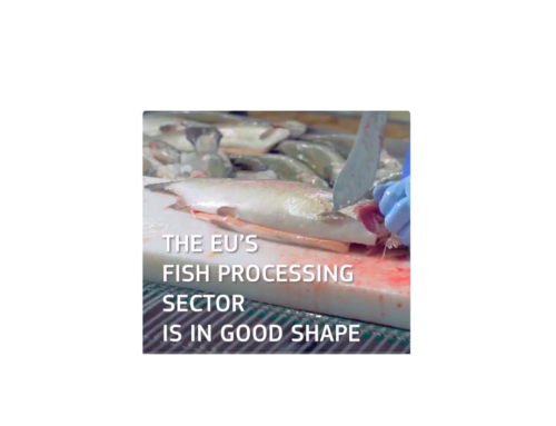 New economic report on the EU Fish processing sector – steady growth since 2010 but are we ready for a sea change in the re-use of residues?